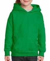 Groene trui met capuchon voor meisjes