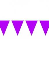 Groot formaat paarse vlaggenlijnen
