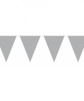 Groot formaat zilveren vlaggenlijnen