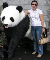 Grote luxe pandabeer 192 cm