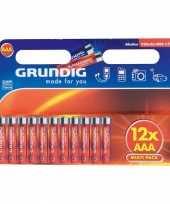 Grundig batterijen aaa pakket 12 stuks