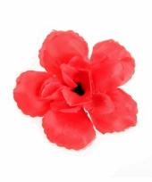 Haar klemmetje met rode roos