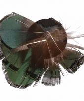 Haarveertjes met klem groen