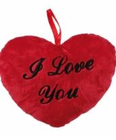 Hartvormig valentijnsdag kussen i love you 10064050