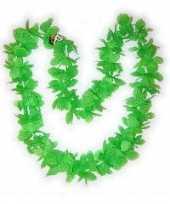 Hawaiikrans groen