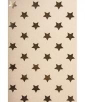 Hobbykarton met gouden sterren