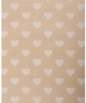 Hobbykarton met witte hartjes
