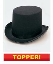 Hoge zwarte hoeden 10049491