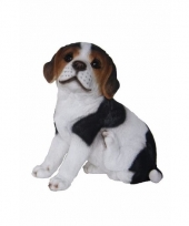 Honden beeld beagle puppy type 2