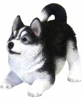 Honden decoratie beeldje husky 21 cm