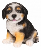 Hondenbeeldje berner sennen 15 cm