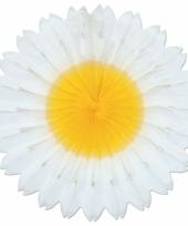 Honeycomb margriet 45 cm