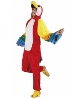 Huispak papegaai voor heren