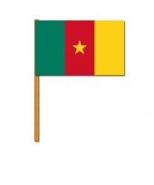 Kameroense zwaaivlag
