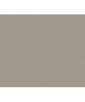 Karton grijs 50x70 cm