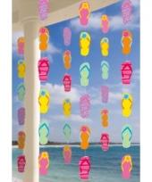 Kartonnen zomer thema hangdecoratie 6 stuks