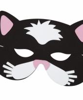 Kat verkleed masker