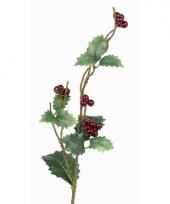 Kerst hulst tak 50 cm