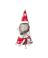 Kerstmannen cape voor uw huisdier