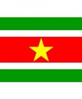 Kleine vlag van suriname 60 x 90 cm