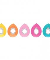 Kleurballonnen setje jill 5 stuks