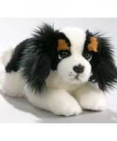 Knuffel hondje king charles spaniel 25 cm