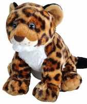 Knuffel luipaard jaguar baby gevlekt 35 cm knuffels kopen