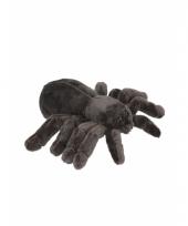 Knuffel tarantula spin 16 cm