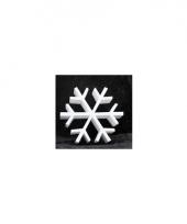 Knutsel sneeuwvlok van piepschuim 30 cm