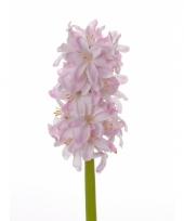 Kunst hyacinten roze