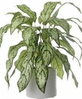 Kunstplant aronskelk 71 cm