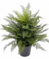 Kunstplant wintervaren 76 cm
