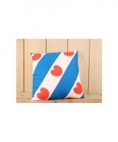 Kussentje met friese vlag print 45 x 45 cm