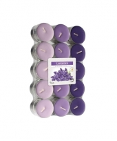 Lavendel geur waxinelichtjes 30 stuks