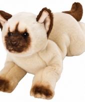 Liggende kat himalayan knuffel 33 cm