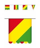 Limburg kleuren vlaggenlijn 3 mtr