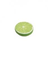 Limoen decoratie kussen 38 cm