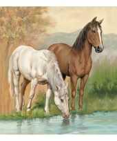 Lunchservetten paarden 3 laags 20st