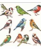 Lunchservetten vogels 3 laags 20 stuks