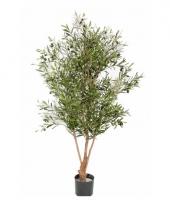 Luxe olijfboom 150 cm