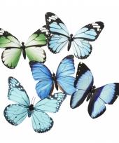 Magneten vlinder blauw groen 13 5 cm