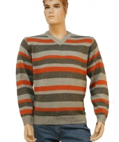 Mannen pullover stripes