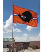 Mega oranje supporters vlag