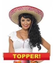 Mexicaanse sombrero 10049667