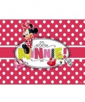 Minnie mouse 3d placemat stippen