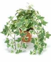 Nep klimop plant groen wit in terracotta pot kunstplant 10143801