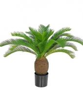 Nep palm 70 cm