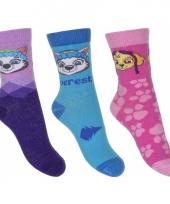 Nickelodeon paw patrol sokken 3 pak everest