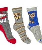 Nickelodeon paw patrol sokken 3 pak grijs