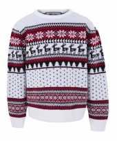 Nordic kerst sweater voor kinderen